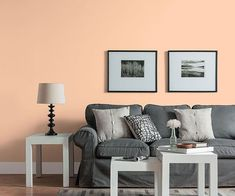A decor of charcoal-gray and white feels a little less serious when juxtaposed with this lively neutral. Home Decor Bedroom, Decor, Peach Living Rooms, Living Room Decor Neutral, Wall Painting Living Room, Living Room Wall Color, Living Room Grey, Living Room Decor, Room Decor
