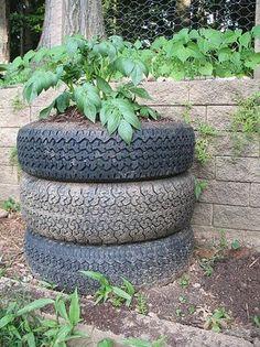 Une tour à patate en pneus (Crédit : Tony Buser/Flickr CC)