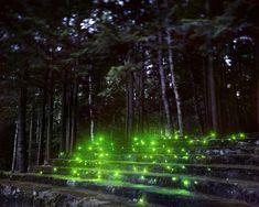 Landscape Light Sculptures by Barry Underwood | iGNANT.de