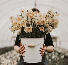 W e l c o m e S p r i n g 🌼💚🌼🌼💚 • Hivatalosan is elérkezett a tavasz első napja • Hamarosan élvezhetjük a napsugarakat is, kitartás!• Az…