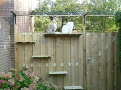 3 Simple and Creative Tricks: Modern Fence Concrete pool fence garage.Black Fenc 3 Simple and Creati Cat Fence, Front Yard Fence, Pool Fence, Backyard Fences, Fence Gates, Yard Fencing, Horse Fencing, Small Fence, Backyard Privacy