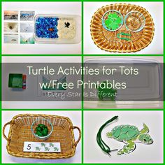 Montessori-inspired sea turtle learning activities and free printables for tots and preschoolers.