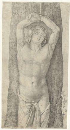 Jacopo de' Barbari | Heilige Sebastiaan vastgebonden aan boom, Jacopo de' Barbari, 1509 - 1516 | Halfnaakte heilige Sebastiaan staat met zijn handen boven zijn hoofd vastgebonden aan boomstam. Opvallend is de afwezigheid van pijlen in zijn torso.