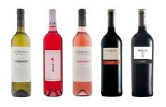 Utiel-Requena elige cinco vinos representativos de la Denominación de Origen https://www.vinetur.com/2015031718590/utiel-requena-elige-cinco-vinos-representativos-de-la-denominacion-de-origen.html