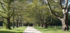 I want this to be my driveway.  Historic Landscape - NJ