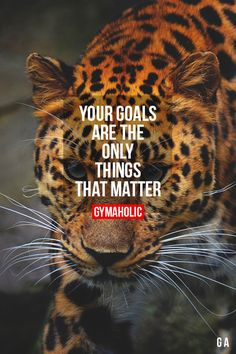 Don't think about anything else. If you're not pursuing your goal, you're committing spiritual suicide.