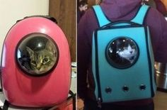 Originales mochilas para transportar gatos