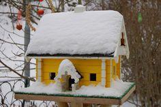 The birdhouse by iHanna @ Flickr
