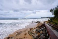 Image result for sunshine coast australia