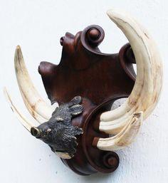 Что такое ??? | Резьба по дереву, кости и камню Taxidermy Display, Animal Skeletons, Polymer Beads, Hunting Rifles, Black Forest, Natural History, Antlers, Wood Carving, Glamping