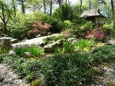 Pine Lodge Gardens. With over 6000 labelled plants, Pinetum Park is a testament to the dedication and enthusiasm of amateur horticulturists Ray and Shirley Clemo a who travelled the world collecting seeds and plants to establish this remarkable Garden.