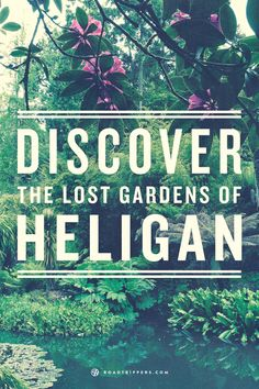 The Lost Gardens of Heligan has an infestation of stone giants!
