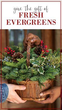 Deck the halls, tables and walls! Tabletop Christmas Tree, Handmade Christmas Decorations, Christmas Tablescapes, Christmas Centerpieces, Christmas Tree Ornaments, Holiday Crafts, Christmas Wreaths, French Christmas, Christmas Love