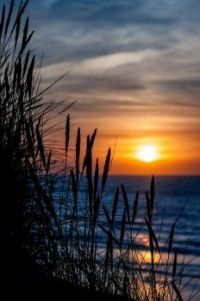 Sunrise / Sunset 2