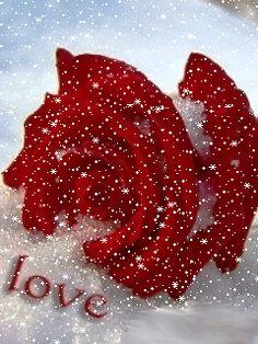 Imagenes De Amor Con Movimiento | imagenes de amor gif,con movimiento,telefonos móviles,love image