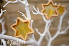 Earlier in the year, we tried our hands over at Life at The Zoo at Stained Glass Cookies – made Heart shaped ones, which of course would be perfect for Christmas too… but today we made some Star Cookie Ornaments. Clearly, the kids ADORED these cookies (well, as sweetie and a cookie one? Who wouldn't?!) …
