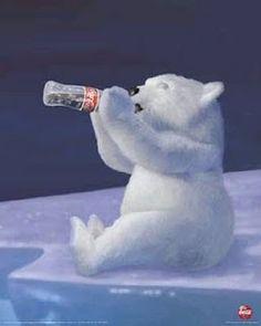 Coke a cola Bear so cute