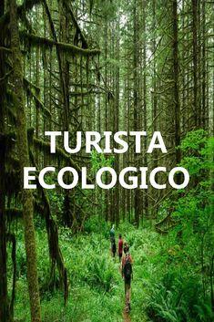 Turista ecológico Costa Rica, Travel Destinations, Environment, Knowledge, Koh Tao, Life, Ideas, Travel Alone, Funny Travel