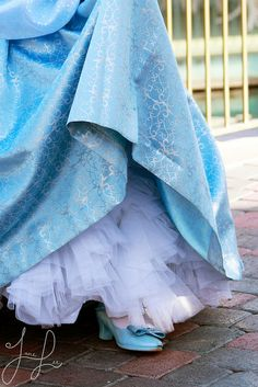 Cinderella costume detail