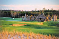 Love at Barefoot Resort is one of the most coveted tee times in Myrtle Beach. Have you had a chance to play here? Myrtle Beach Golf, Myrtle Beach Hotels, Myrtle Beach Vacation, Best Golf Courses, Us Beaches, South Carolina, Barefoot, Coupons, Articles