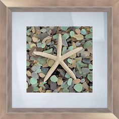 Framed photograph of a starfish resting on sea glass.       Product: Framed print   Construction Material: Polystyrene, photo paper and glass   Color: Silver frame   Features:  Photograph is framed between two pieces of glass   Ready to hang    Dimensions: 18 H x 18 W