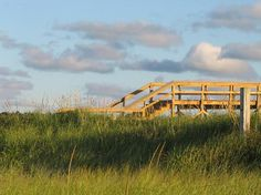 I just wonder what's on the other side of this boardwalk to the ocean????????