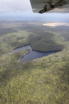 Bird's Eye view of The Butterfly Lakes on Fraser Island - shared by Koves!  Cool Dingo guided 2 and 3-day tours of Fraser Island #cooldingo #fraserisland #queensland #australia