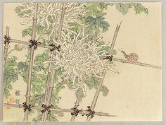 Chrysanthemum and Snail  by Bairei Kono 1844-1895