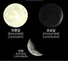 Learn Korean Alphabet, Korean Words Learning, Korean Language, Study, Korean Quotes, Korean Writing, Korean Alphabet, Interesting Facts, Words
