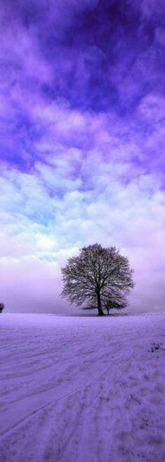 Beautiful Nature in purple All Nature, Amazing Nature, Beautiful World, Beautiful Places, Cool Pictures, Beautiful Pictures, Winter Beauty, Pics Art, Winter Scenes