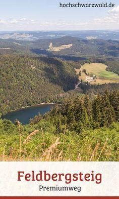 Wandern auf schmalen Pfaden inmitten von geschützter Natur. Ein Premiumwanderweg auf den höchsten Berg im Schwarzwald, mit der schönsten Aussicht.