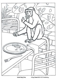 Animal Coloring Pages |