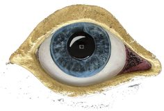 """The Eye of Selfie 2015"" https://sites.google.com/site/manuelsurrealist/ http://www.manuelmykonos.com #manuelsurrealist #manuelmykonos#greeksurrealism#sculptsurrealism #daliesque #mykonosart #manuelartwork #surrealsculpture#surrealistsculptor #painter  #painting #Mykonos"