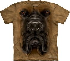Mastiff Big Face T-shirt - Size Small Only Giant Dog Breeds, Giant Dogs, Big Dogs, T Shirts Uk, Cool T Shirts, Tee Shirts, Wallpaper English, Funny Animal Faces, Harley Davidson