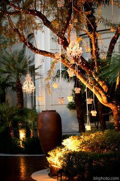 A recent bride hung delicate chandeliers from the trees in our lushly landscaped Fountain Terrace.