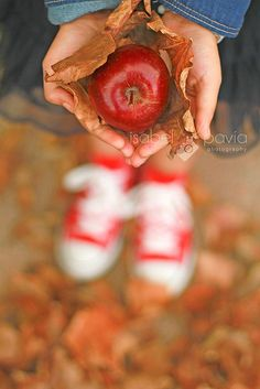 Child / Family Photography / Pretty Autumn Photo / Prop Ideas / Pose Idea / Back To School Photo Session Idea