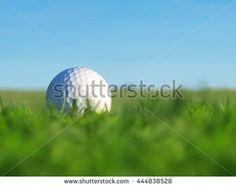 Golf Ball On Green Grass Beautiful Stock Photo (Edit Now) 444838528