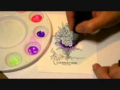 Coloring a Carnation with Spectrum Noir Markers - YouTube