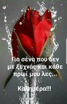 Good Morning Greeting Cards, Good Morning Greetings, Good Morning Texts, Good Morning Quotes, Days And Months, Greek Quotes, Positive Thoughts, Happy Day, Life Quotes