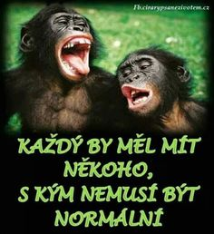 To můžu být i sám 🤣 Friendship Pictures Quotes, For Facebook, True Friends, Man Humor, Funny Texts, Cool Words, Quotations, Haha, Funny Quotes