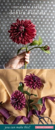 How To Make Paper Dahlia Flowers Small Paper Flower Tutorial Handmade Flowers Paper Paper Flowers Paper Flowers Diy