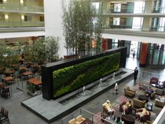 Green Wall... awesome!