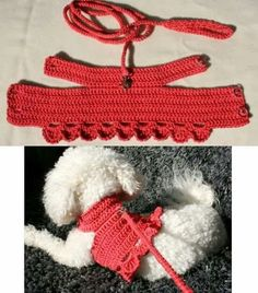 Best 12 Crochet Dog Harness Dog Dress Small dog clothes Harness and – SkillOfKing. Crochet Dog Clothes, Crochet Dog Sweater, Dog Sweater Pattern, Hand Crochet, Free Crochet, Knit Crochet, Small Dog Clothes, Pet Clothes, Cat Clothing