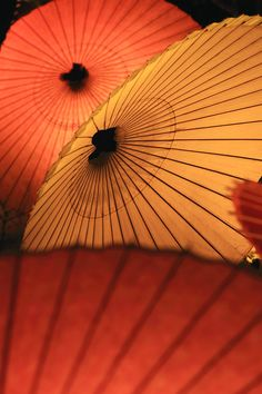 Orange Japanese umbrellas - makoto isa