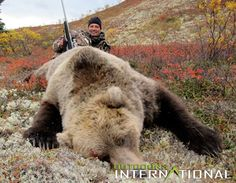 Council Alaska Safaris, owned by Krist Zwerneman has twenty-five years of hunting experience in Alaska and is committed to providing a quality hunt. Grizzly Bear Hunting, Bow Hunting Deer, Boar Hunting, Grizzly Bears, Hunting Calls, Big Game Hunting, Rifles, Alaska Hunting, Nature Hunt