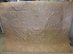 Dupioni Silk Wholecloth