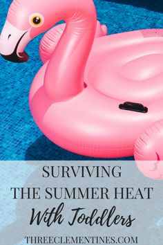 Surviving the summer