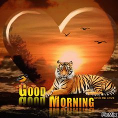 Cute Good Morning Images, Good Morning Flowers Gif, Good Morning Funny, Good Morning Picture, Morning Pictures, Beautiful Morning, Good Morning Messages Friends, Morning Wishes For Her, Morning Greetings Quotes