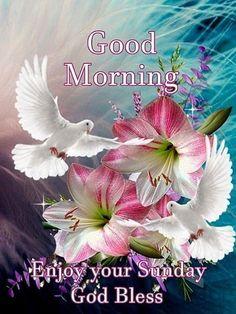 Good Morning, Enjoy Your Sunday .