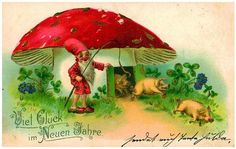 In Germany, amanita mushrooms are traditionally seen as symbols of good luck, especially during Christmas and New Year